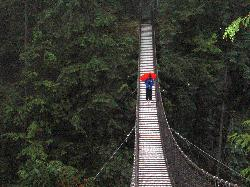 Lynn Canyon Free Bridge (23422948)