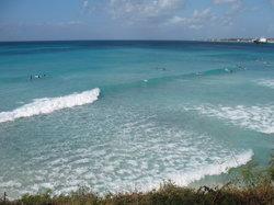 Barbados Surf Trips