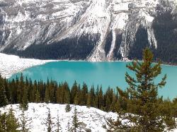 peyto lake (23510444)