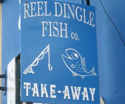 Reel Dingle Fish