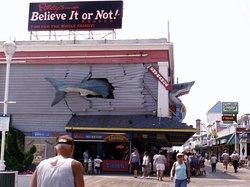 Ripley's Believe it or Not! Ocean City