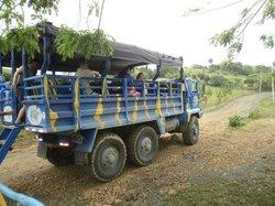 Monster Truck Safari - Puerto Plata Route