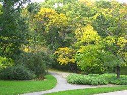 アーノルド植物園