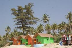 Mandrem Beach (24287167)