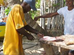 Preparing fish just for us