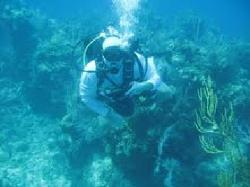 Diving for the first time
