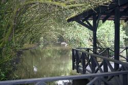 Bridge on the way to the beach