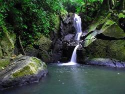 Beautiful water fall. (24397843)