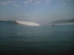 TropicOlas Surf School