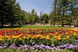 Estes Park Convention & Visitors Bureau (24482948)