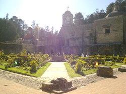 حديقة ديزييرتو دي لوس ليون الوطنية