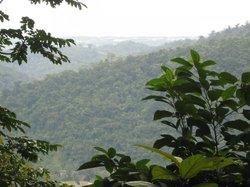 Parque Nacional Pico Bonito