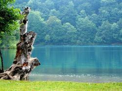 Lago central de manhã bem cedo (24556883)