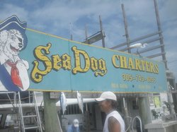 Sea Dog Fishing Charters