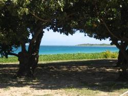 Fiji '07 (24598174)