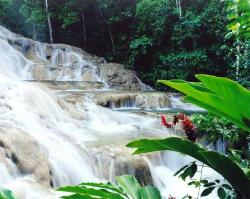swimming in the jamaican waterfall (24660048)
