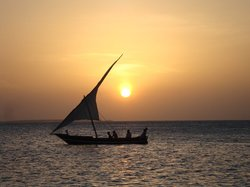Sunset Cruise - Dhow Safaris