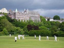 Cricket! (24696781)