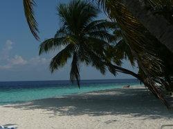 Thudufushi Island