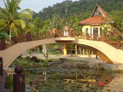 village (24796655)