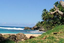 Провинция Мария-Тринидад-Санчес
