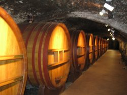 Avignon Wine Tours