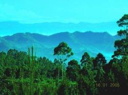 Gunung Patuha (25160924)