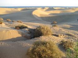 Playa del Ingles, Gran Canaria (25192162)