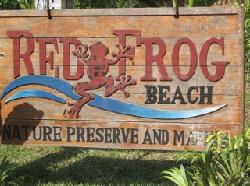Red Frog Beach!
