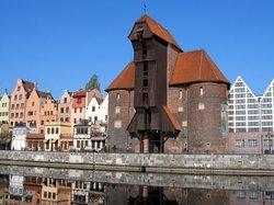 Crane (Zuraw)