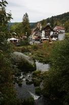 Triberg town view from the forest.