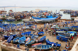 Essaouira harbour (25275096)