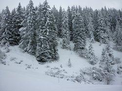 Massif du Mont d'Arbois