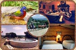 Quiet Hill Ranch - Fredericksburg