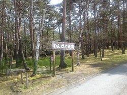 Fuji Subaru Land Doggy Park