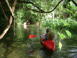 BeachnRiver Canoe and Kayak Rentals