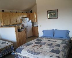 Alaskan Spruce Cabin