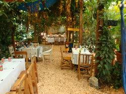 Cafe Entre Nubes
