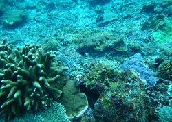 Pulau Nusa Penida