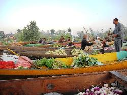 vegetable market - early morning - dal lake , srinagar (25786307)