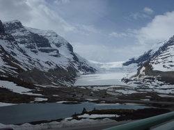 Banff Guide Service