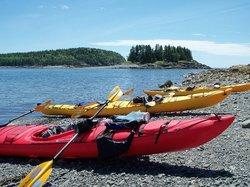 Acadia Park Kayak Tours