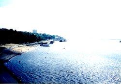 Amur cliff