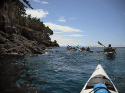 Outdoor Odysseys Kayak Day Tours