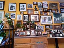 Beach Dog Cafe