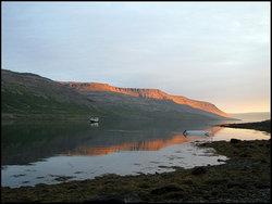 Saga of Gisli Sursson in Arnarfjord