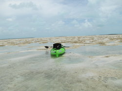 Rolle's Sea Kayaking Adventures