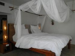 The lovely and comfortable bed