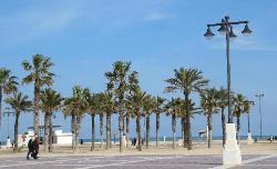 Valencias Promenade (26865206)