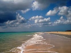 Playa Sotovento (26901362)
